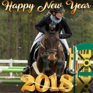 Wszystkiego najlepszego w Nowym Roku 2018